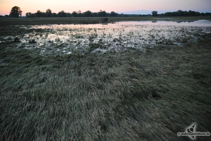 hochwasser-einsatz-gruna-2013-092