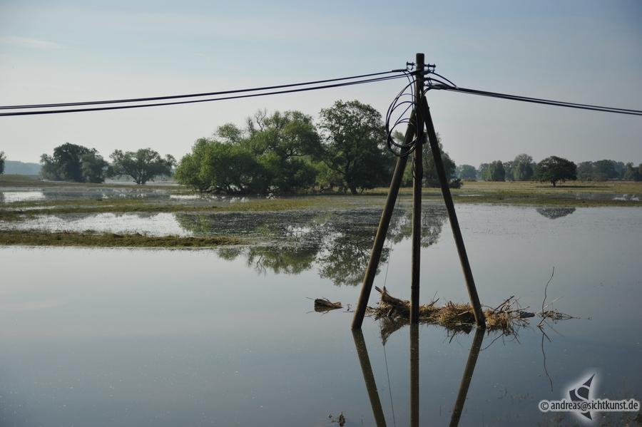 hochwasser-einsatz-gruna-2013-105