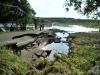 hochwasser-einsatz-gruna-2013-026