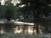 hochwasser-einsatz-gruna-2013-078
