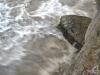 hochwasser-leipzig-c-a-krueger-13