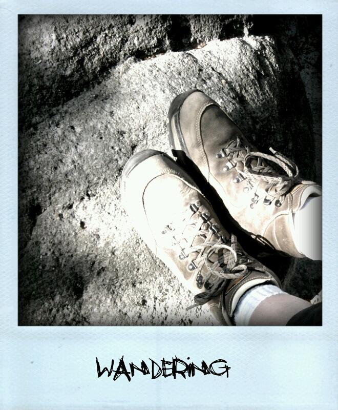 25157442-wandering